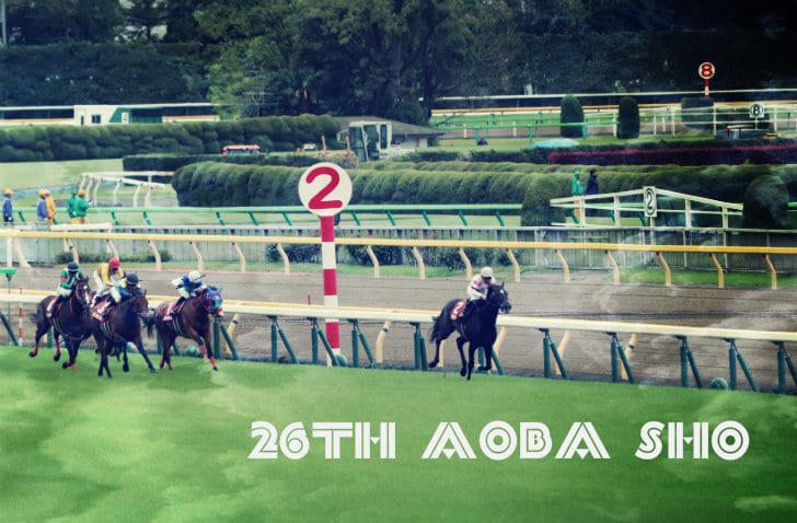 写真で振り返る平成最後の競馬観戦第26回青葉賞レース回顧+第159回 ...